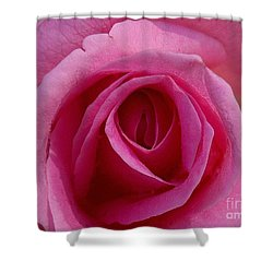 Inviting Pink Shower Curtain by Paul  Wilford