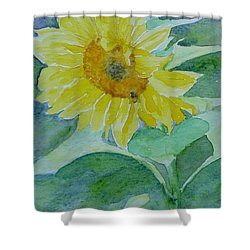 Inviting Sunflower Small Sunflower Art Shower Curtain by Elizabeth Sawyer