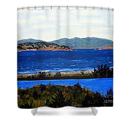 Shower Curtain featuring the painting Iona Formerly Rams Islands by Barbara Griffin