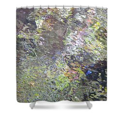 Iridescence Shower Curtain by Donna Blackhall