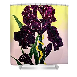 Iris Shower Curtain by Andrew Petras