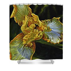 Iris Shower Curtain by Craig T Burgwardt