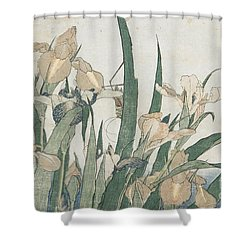 Iris Flowers And Grasshopper Shower Curtain by Hokusai