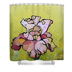 Iris Iv Shower Curtain by Shadia Derbyshire