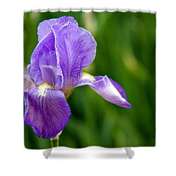 Shower Curtain featuring the photograph Iris by Lana Trussell