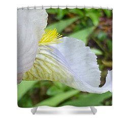 Iris Macro 2 Shower Curtain