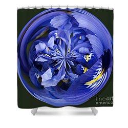 Iris Orb Shower Curtain by Anne Gilbert
