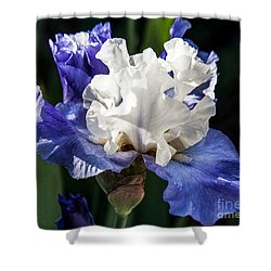 Shower Curtain featuring the photograph Stairway To Heaven Iris by Roselynne Broussard