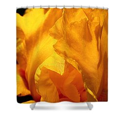 Iris Undulation Shower Curtain by Rona Black