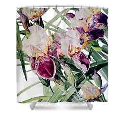 Iris Vivaldi Spring Shower Curtain by Greta Corens