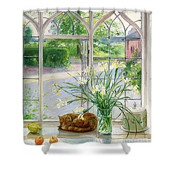 Irises And Sleeping Cat Shower Curtain by Timothy Easton