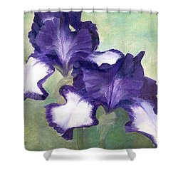 Irises Duet In Purple Flowers Colorful Original Painting Garden Iris Flowers Floral K. Joann Russell Shower Curtain by Elizabeth Sawyer