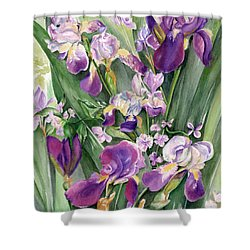 Irises In The Garden Shower Curtain