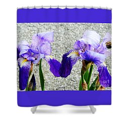 Shower Curtain featuring the photograph Irises by Jasna Dragun