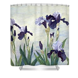 Irises Purple Flowers Painting Floral K. Joann Russell                                           Shower Curtain by Elizabeth Sawyer