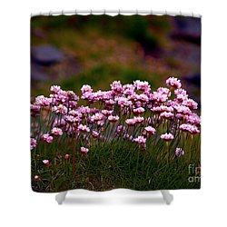 Irish Sea Pinks Shower Curtain