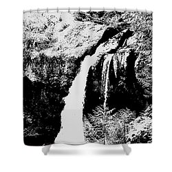 Iron Creek Falls Bw Shower Curtain