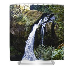 Iron Creek Falls Shower Curtain