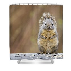 Irresistibly Cute Shower Curtain