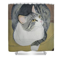 Shower Curtain featuring the painting Is Dinner Ready by Norm Starks
