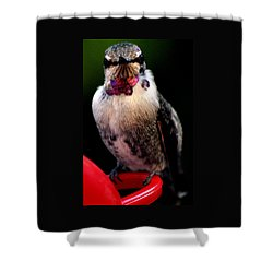 Shower Curtain featuring the photograph Is This Pose Alright With You  by Jay Milo