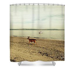 Island Deer Shower Curtain