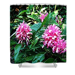 Shower Curtain featuring the photograph Island Flower by Leanne Seymour