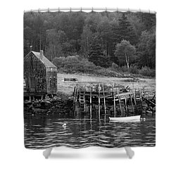 Island Shoreline In Black And White Shower Curtain