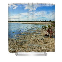 Isolated Shower Curtain by Chad Dutson