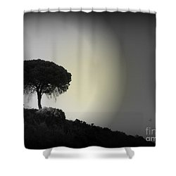 Isolation Tree Shower Curtain by Clare Bevan