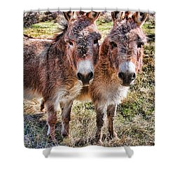 It Is What It Is Shower Curtain by James BO  Insogna