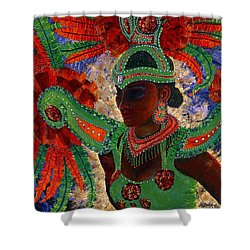 It Looks Like Mardi Gras Time Shower Curtain by Margaret Bobb