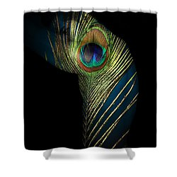 It Not The Time To Leave Shower Curtain by Mark Ashkenazi