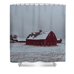 It Stood Forever Shower Curtain by Abigail Ellison