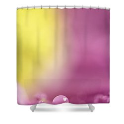 It Was Only In My Dreams Shower Curtain