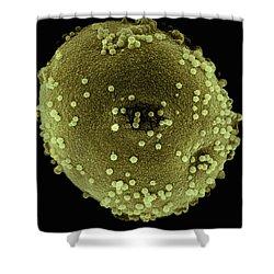 Italian Cypress Pollen Sem 2800x Shower Curtain by Albert Lleal