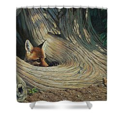 Fox - It's A Big World Out There Shower Curtain by Crista Forest