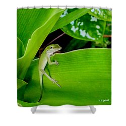 Shower Curtain featuring the photograph It's Easy Being Green Squared by TK Goforth