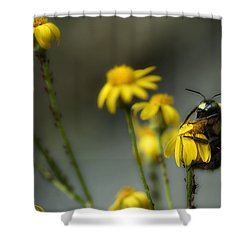 It's Mine-all Mine Shower Curtain by Michael Eingle