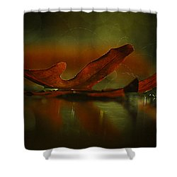 Its Raining Fall  Shower Curtain by Tammy Schneider