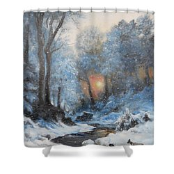 It's Winter Shower Curtain