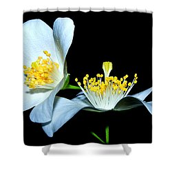 It's You And Me...together Shower Curtain by Tammy Schneider
