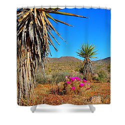 Pink In The Desert Shower Curtain