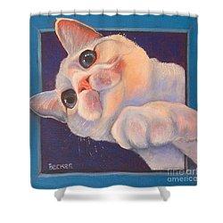 I've Been Framed Shower Curtain