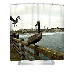I've Been Waiting For You Shower Curtain by Melissa McCrann