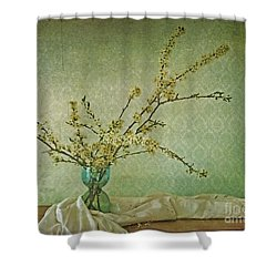Ivory And Turquoise Shower Curtain