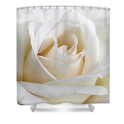 Ivory Rose Flower Shower Curtain by Jennie Marie Schell