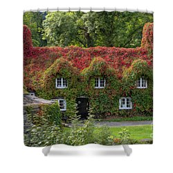 Ivy Cottage Shower Curtain by Adrian Evans
