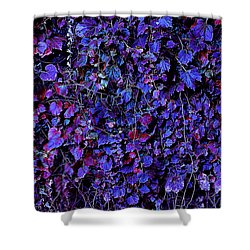 IVY Shower Curtain