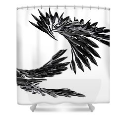 J Big   Crows Shower Curtain